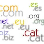 La forma correcta de escoger un dominio